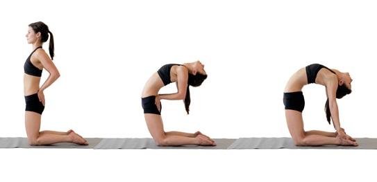 camel-yoga
