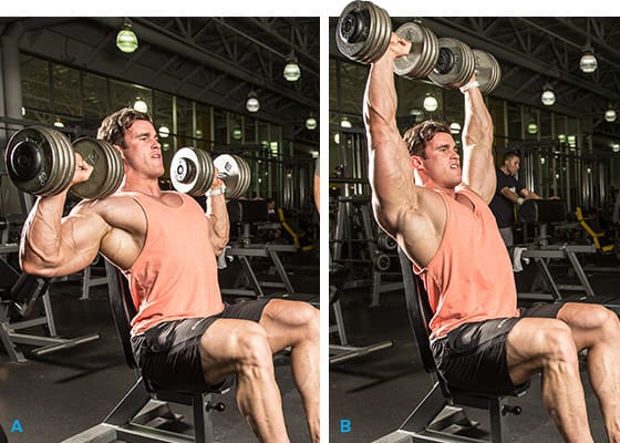 Heavy Seated Dumbbell Shoulder Press